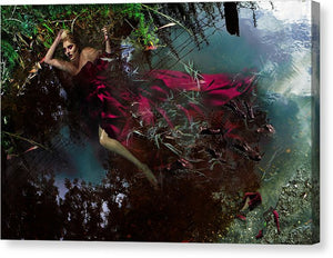 Woman in a Crimson Ballgown Swimming With Alligators.