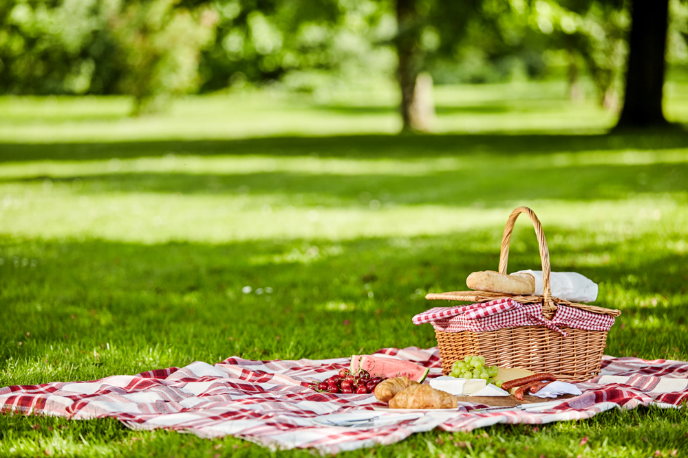 Picnic for 2