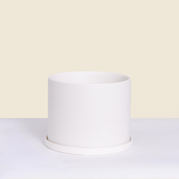 Medium White Pot with Saucer