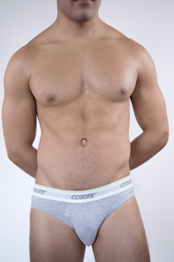 Heather Grey Brief - Coyote Jocks