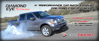 DIAMOND EYE EXHAUST SYSTEM '11-14 FORD F150 3.5L ECO-BOOST - STAINLESS