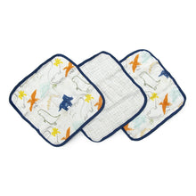 Load image into Gallery viewer, Dinoland 3 Piece Washcloth Set