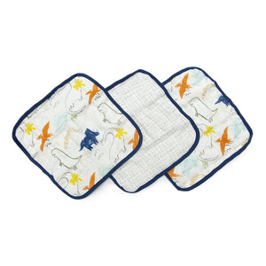 Dinoland 3 Piece Washcloth Set