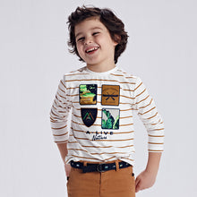 Load image into Gallery viewer, Nature Striped Long Sleeve T-shirt