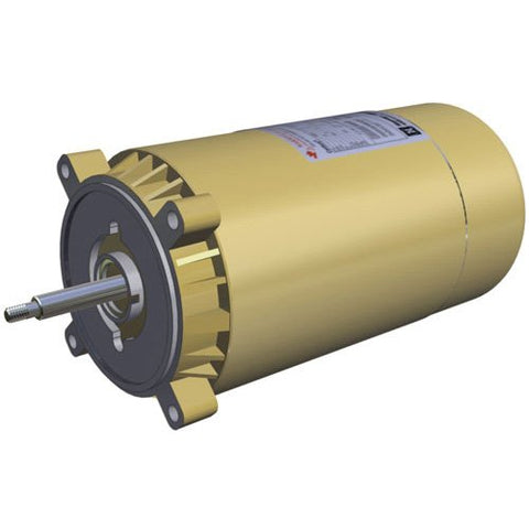 Hayward SPX1607Z1M Motor Replacement for Select Hayward Pump, 1-HP