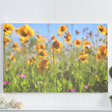"""wildflower field"" nature photography print"