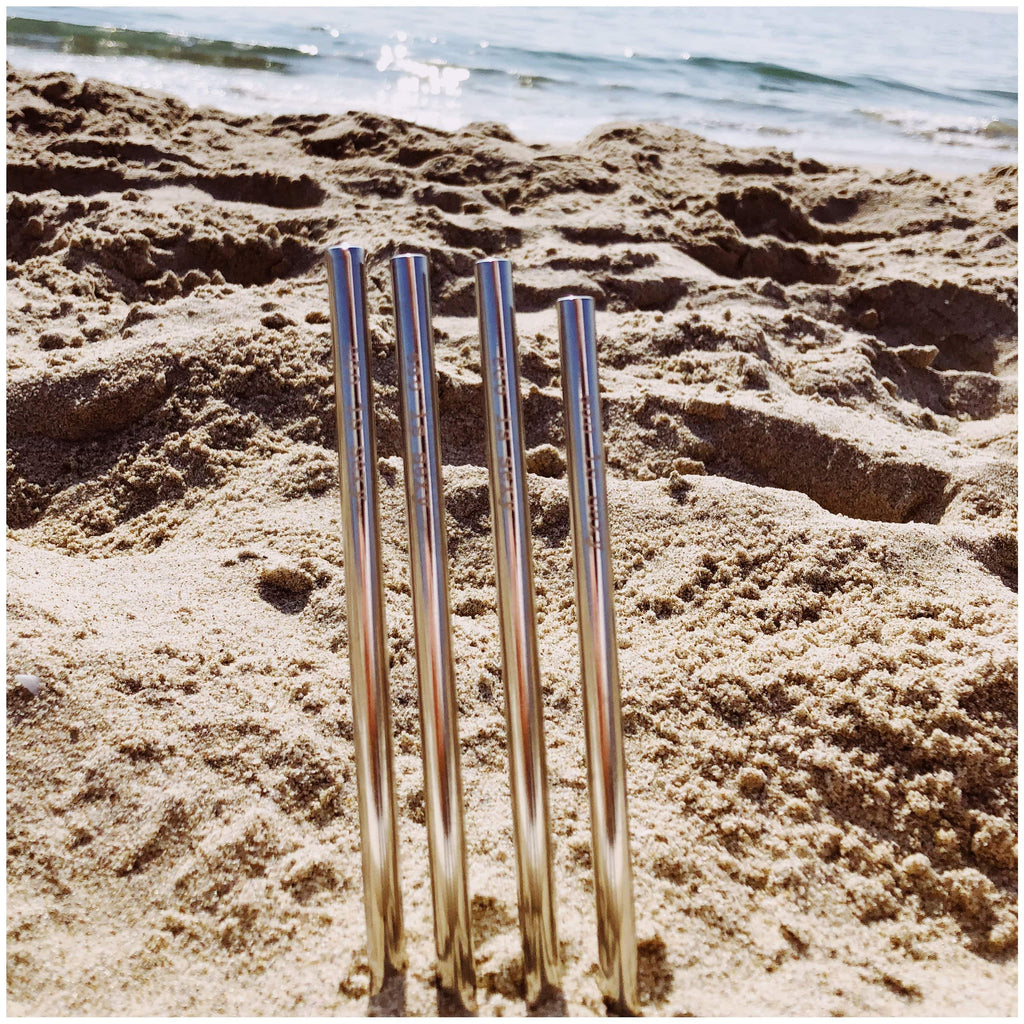 Straws Stainless-Steel Silver Straws with Cloth Carrying Bag