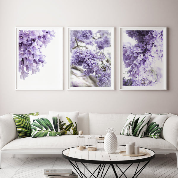 Jacaranda 1, 2and 3