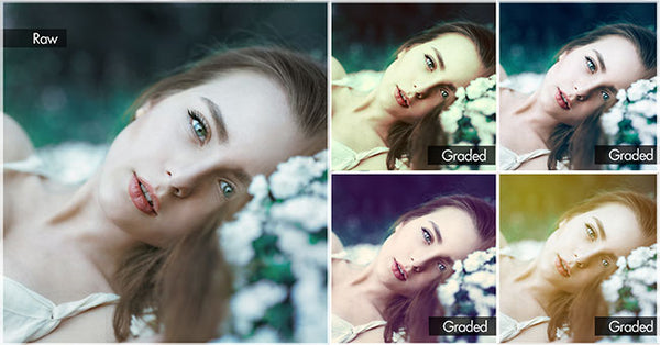 photoshop & lightroom pack