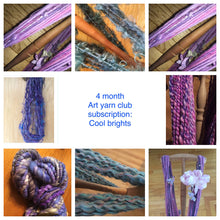 "Monthly art yarn club subscription - ""cool brights"""