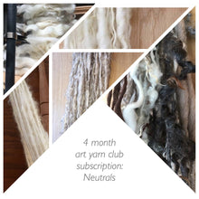 "Art yarn mystery club subscription - ""neutrals"", monthly subscription,  surprise handspun"