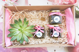 Green and Fresh  Tea Gift box