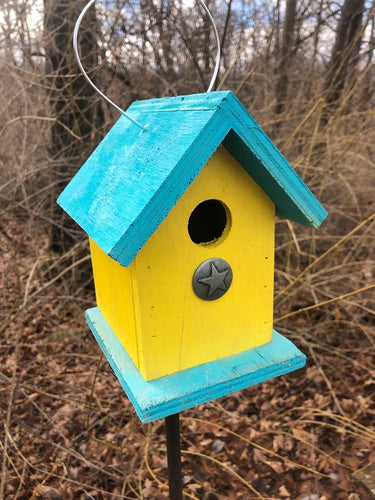 Song Bird Birdhouse Yellow Sea Breeze Blue Fully Functional Hand Crafted