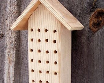 Mason Orchard Bee Box Garden Flowers
