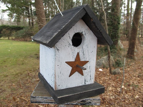 Song Bird Birdhouse Rusty Star White Black Fully Functional Hand Crafted