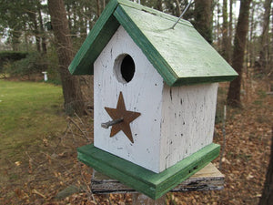 Song Bird Birdhouse Rusty Star White Green Fully Functional Hand Crafted