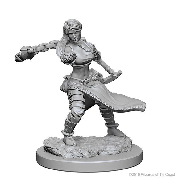 D&D Nolzurs Marvelous Unpainted Miniatures Human Female Monk