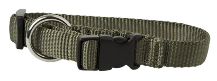 Decoy Dog collar in webbing Green 60 cm