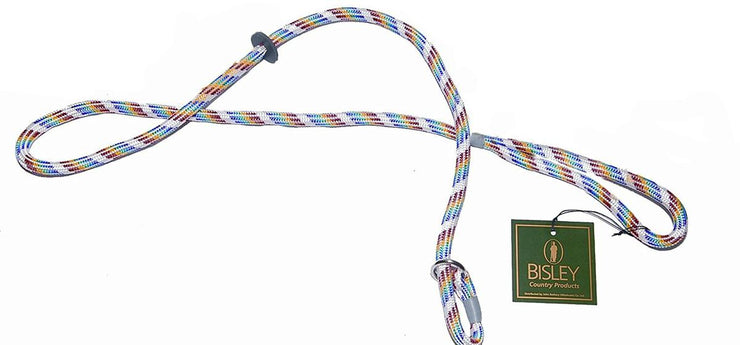 Bisley Loose Multicoloured Dog Slip Lead