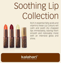 Load image into Gallery viewer, SOOTHING LIPS 2-Piece Collection (Color: Desert Rose)