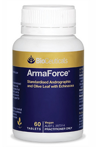 ArmaForce