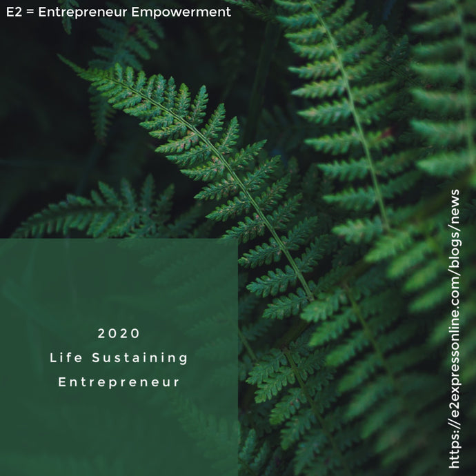 2020 Life Sustaining Entrepreneurs