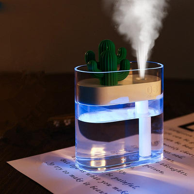 Clear Cactus Air Humidifier Running At Night
