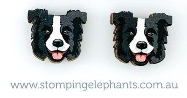 Border Collie Head Studs