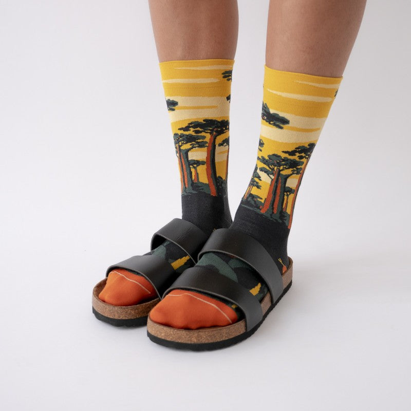 Bonne Maison Egyptian Cotton Socks 'Buttercup Baobab' | Unisex Socks available at UK stockists Cuemars.