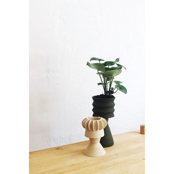 Lifestyle picture of Handmade planter by Mari Masot using catalan stoneware