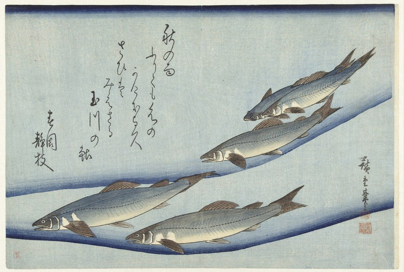Ukiyo e Trout fauna Japanese Print by hiroshige showcasing 5 trouts swimming in the sea with Japanese text and Hiroshige signature
