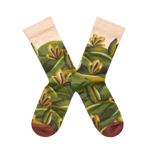 Cool socks designed by French brand Bonne Maison featuring cypress