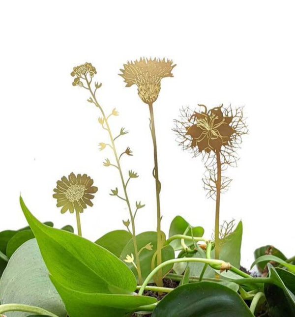 Picture of Botanical ornaments for plants by Another Studio available to purchase at cuemars.com