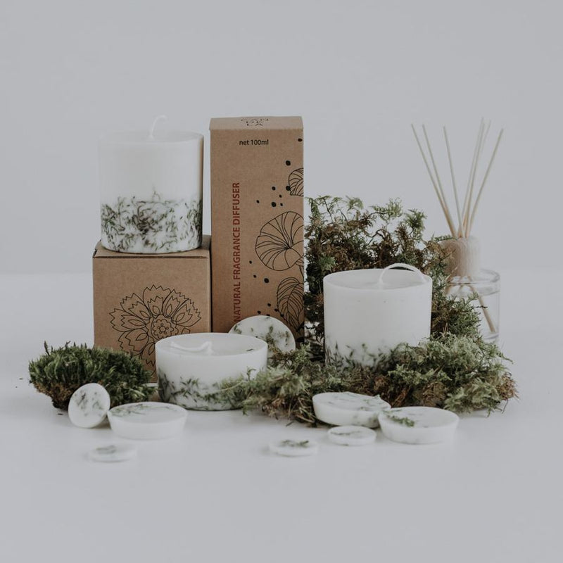 The Munio Gift Box Candles and Discs with Moss Natural Scents