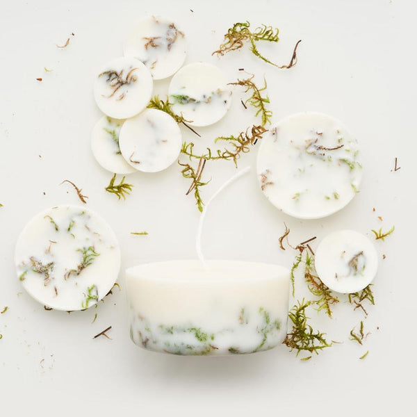 Moss eco soy wax candle & soy discs - gift box