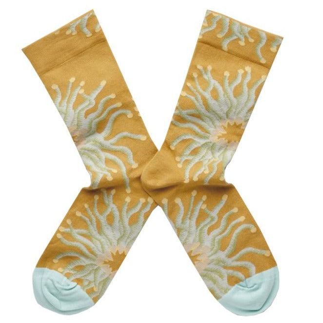 Bonne Maison Egyptian Cotton Socks 'Ochre Anemone' | Unisex Socks available at UK stockists Cuemars.