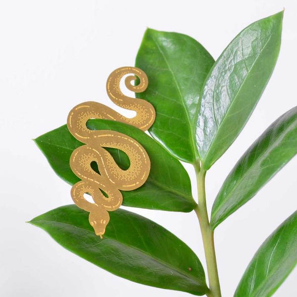 plant-animal-london-anotherstudio-homedecor-cuemars-snake