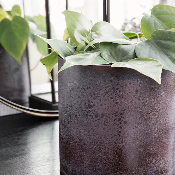 Steel plant pot / Bordeaux