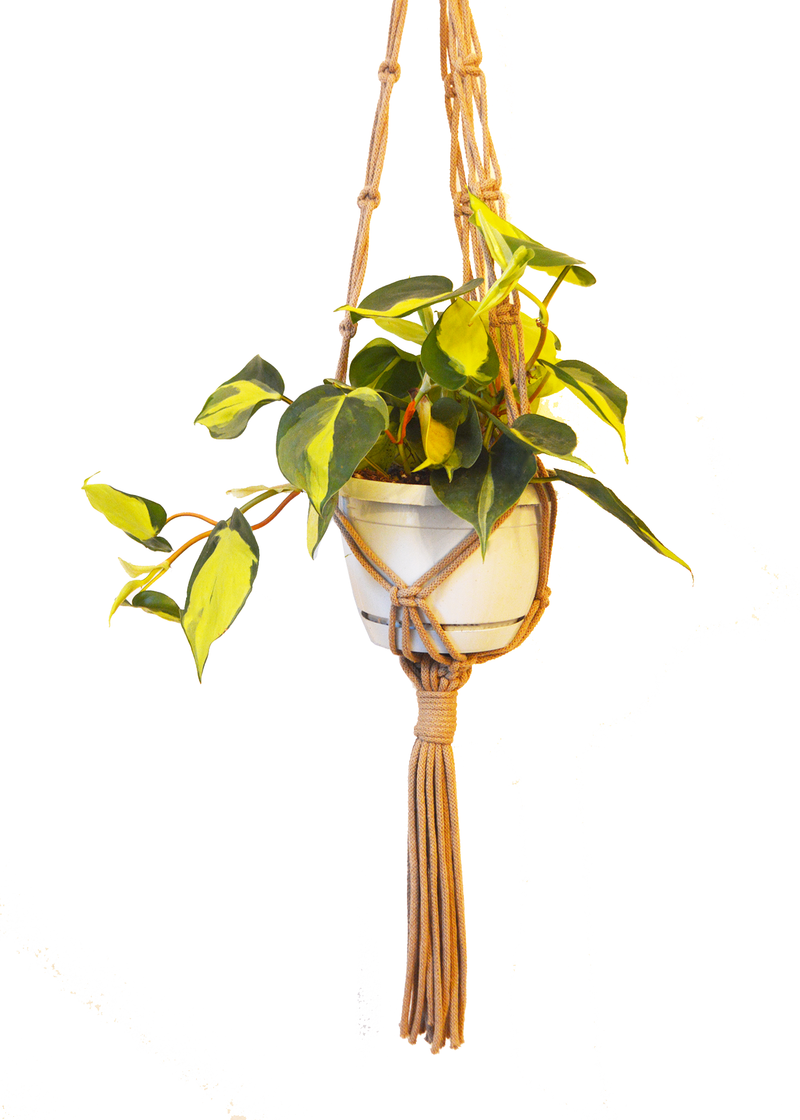 Sustainable cotton macramé plant hanger - Coffee