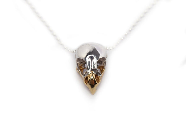 Handmade bird of prey skull necklace in sterling silver with a 24ct gold plated beak