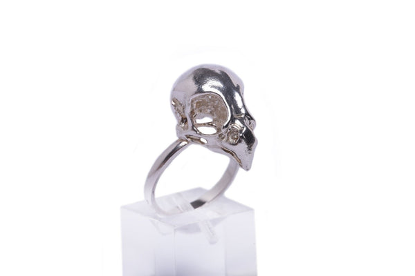 Details of this handmade bird of prey skull ring in sterling silver