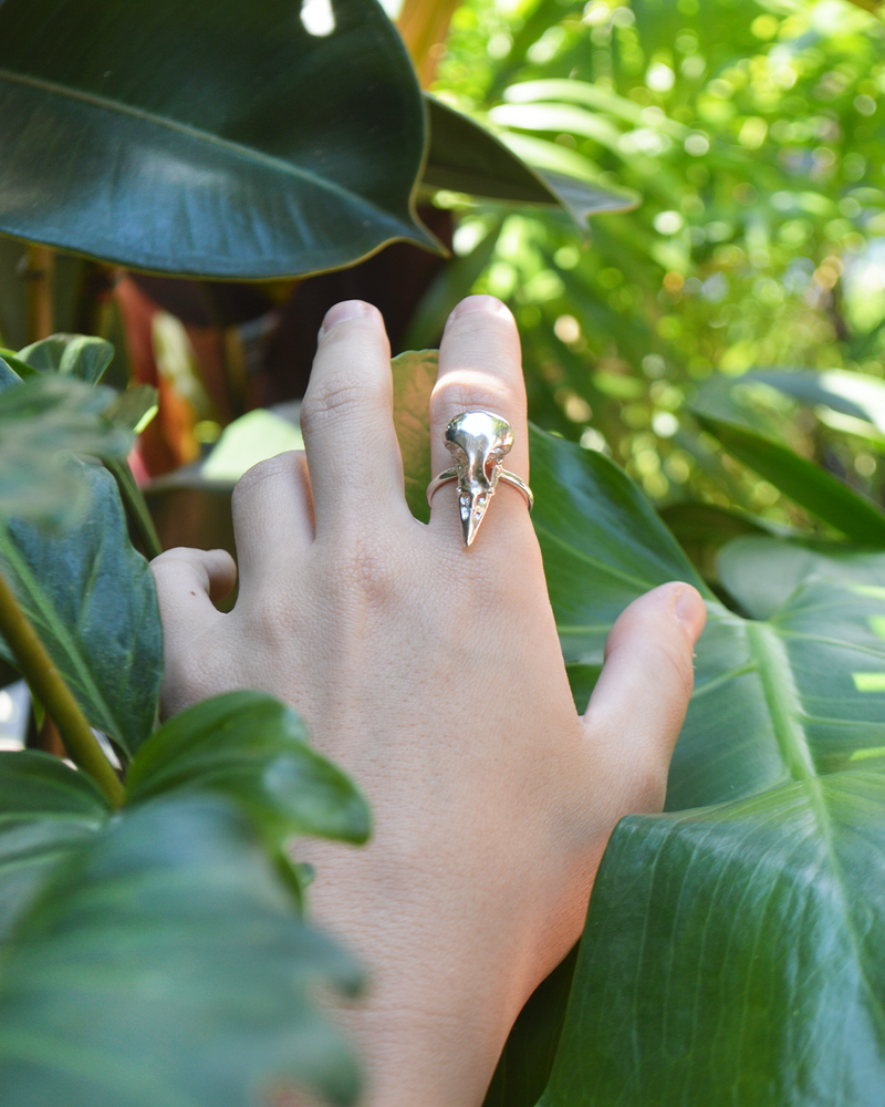 Close up details of handmade large bird skull statement ring in sterling silver