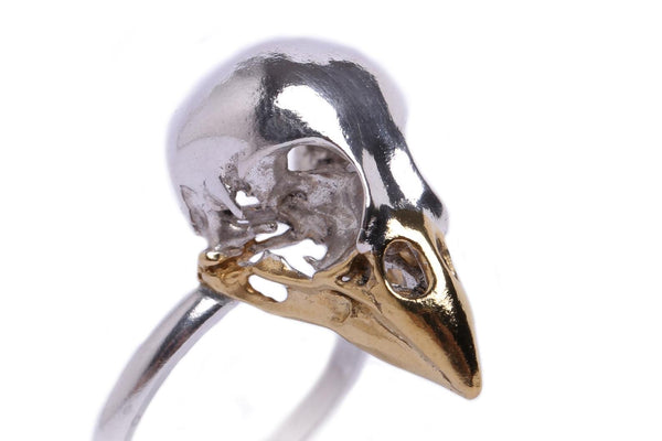 Close up details of handmade finch skull ring in sterling silver with a 24ct gold plated beak