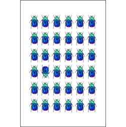 Multiple Blue Beetles - Insect Print