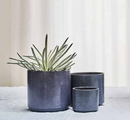 lifestyle pictures of textured and glazed midnight ceramic planter available at cuemars