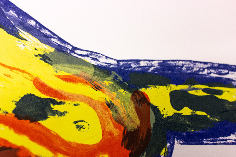 Paint strokes' details from Tom Berry's 6 layer screen print illustration Fire in the Belly limited edition of 27