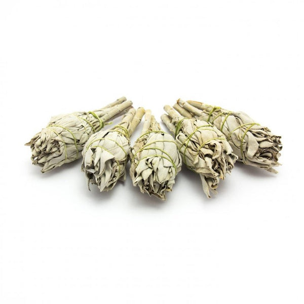 White Sage Cleanse Smudge Stick to cleanse your space