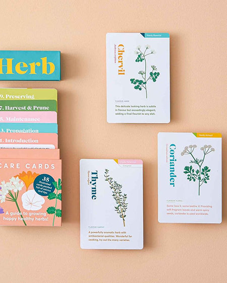 Illustrated herb cards by Another Studio
