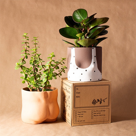 Nude Bottom planter in terracotta and a nude top with a white tshirt with black dots both with plants inside