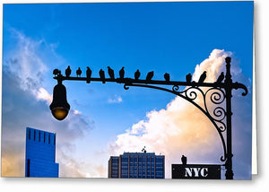 Birds of New York City Greeting Card